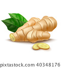 Realistic Detailed 3d Whole Ginger Root and Slices. Vector 40348176