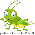 แมลง,การ์ตูน,คริกเก็ต 40351638