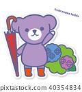 bear, bears, hydrangea 40354834
