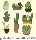 Set of Cactus, Hand drawn cactus, Vector 40373858