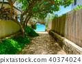 하와이, 골목길, 작은길 40374024