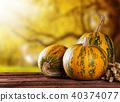 halloween, wood, autumn 40374077