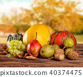 Fall fruit and vegetables on wood. Thanksgiving concept 40374475