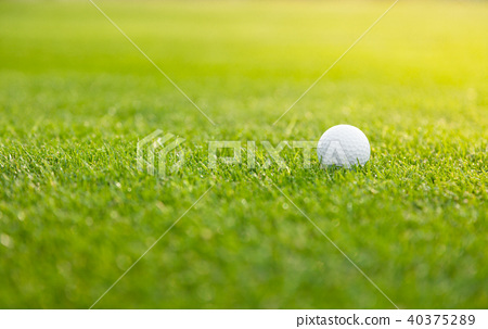 Golf ball on the green lawn 40375289