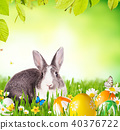 Easter rabbit in grass 40376722