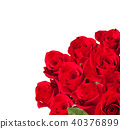 Bouquet of roses 40376899