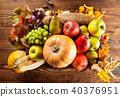 autumn, pumpkin, wood 40376951