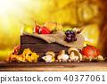 vegetable, autumn, fruit 40377061
