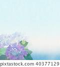 繡球花 花朵 花 40377129