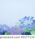 繡球花 花朵 花 40377135