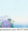 背景 - 繡球 - 青蛙 40377169