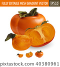 Persimmon on white background. Vector illustration 40380961