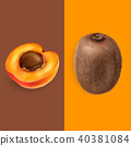 apricot, kiwi, vector 40381084