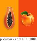 apricot, papaya, vector 40381086