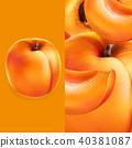 apricot, orange, vector 40381087