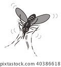 Mosquito flying 40386618