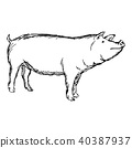 pig vector illustration sketch doodle hand drawn 40387937