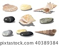 sea, shell, pebble 40389384