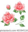 水彩画 水彩 花 40394516