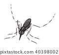 모기 흰줄 날개를 닫고 머물러있다 40398002