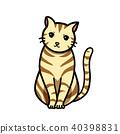 一隻貓 40398831