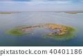 Ceaplace island. Danube Delta, Romania 40401186