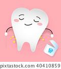molar teeth tooth 40410859