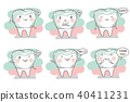 molar teeth tooth 40411231
