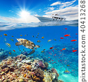 Underwater coral reef with horizon and water surface 40413268