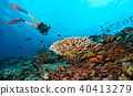 Scuba diver explore a coral reef 40413279