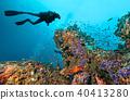 Scuba diver explore a coral reef 40413280
