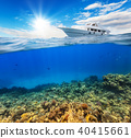Underwater coral reef with horizon and water surface 40415661