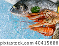 Fresh seafood placed on ice drift 40415686