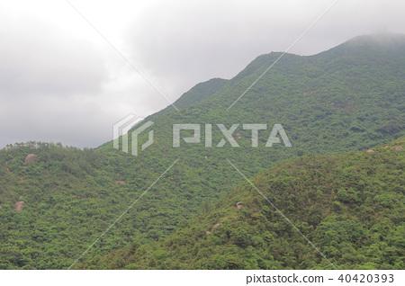foggy day at Hong Pak Country Trail 40420393