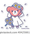 bear, bears, wedding 40425661