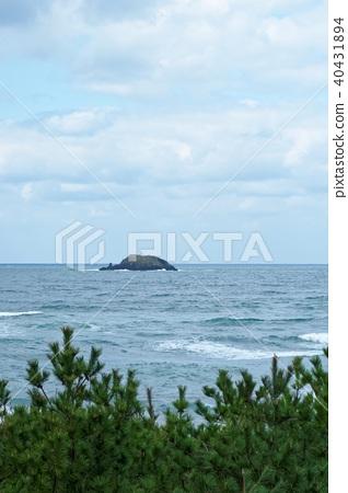 Tottori whale island 40431894