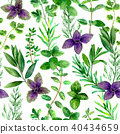 Herbs spices watercolor green seamless pattern 40434659