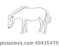 Sketch line of a horse on a white background 40435470