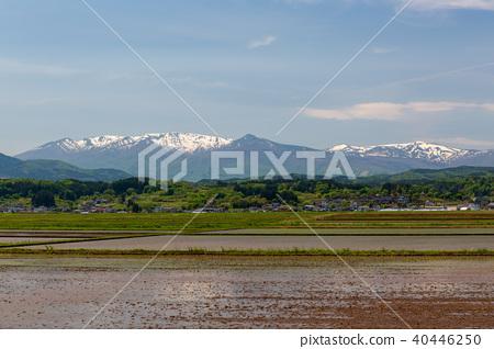 藏王和剩下的雪域的稻田 40446250