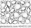 Hand Drawn Wallpaper Background of Bacuri Fruits 40455118