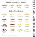 A variety of gluten free and gluten grains 40456323