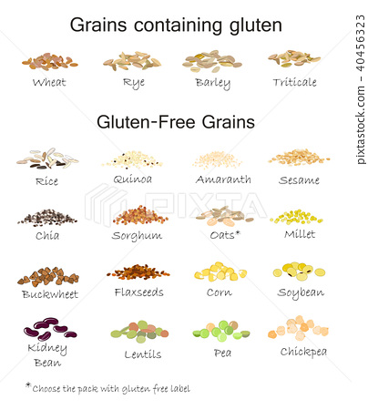 A variety of gluten free and gluten grains 40456323
