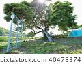 풍경, 경치, 나무 40478374