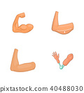arm, icon, set 40488030