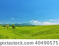 ท้องฟ้าเป็นสีฟ้า,โลก ดิน,ทุ่งหญ้า 40490575
