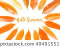 Hello summer concept on white background 40491551