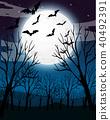 夜晚 森林 树林 40492391
