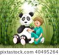 panda bamboo animal 40495264