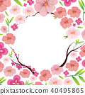sakura, spring, branch 40495865