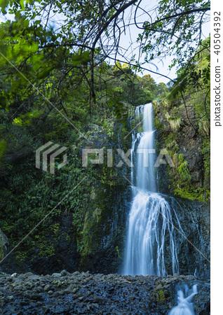 뉴질랜드 비 하 키테키테 폭포 40504392